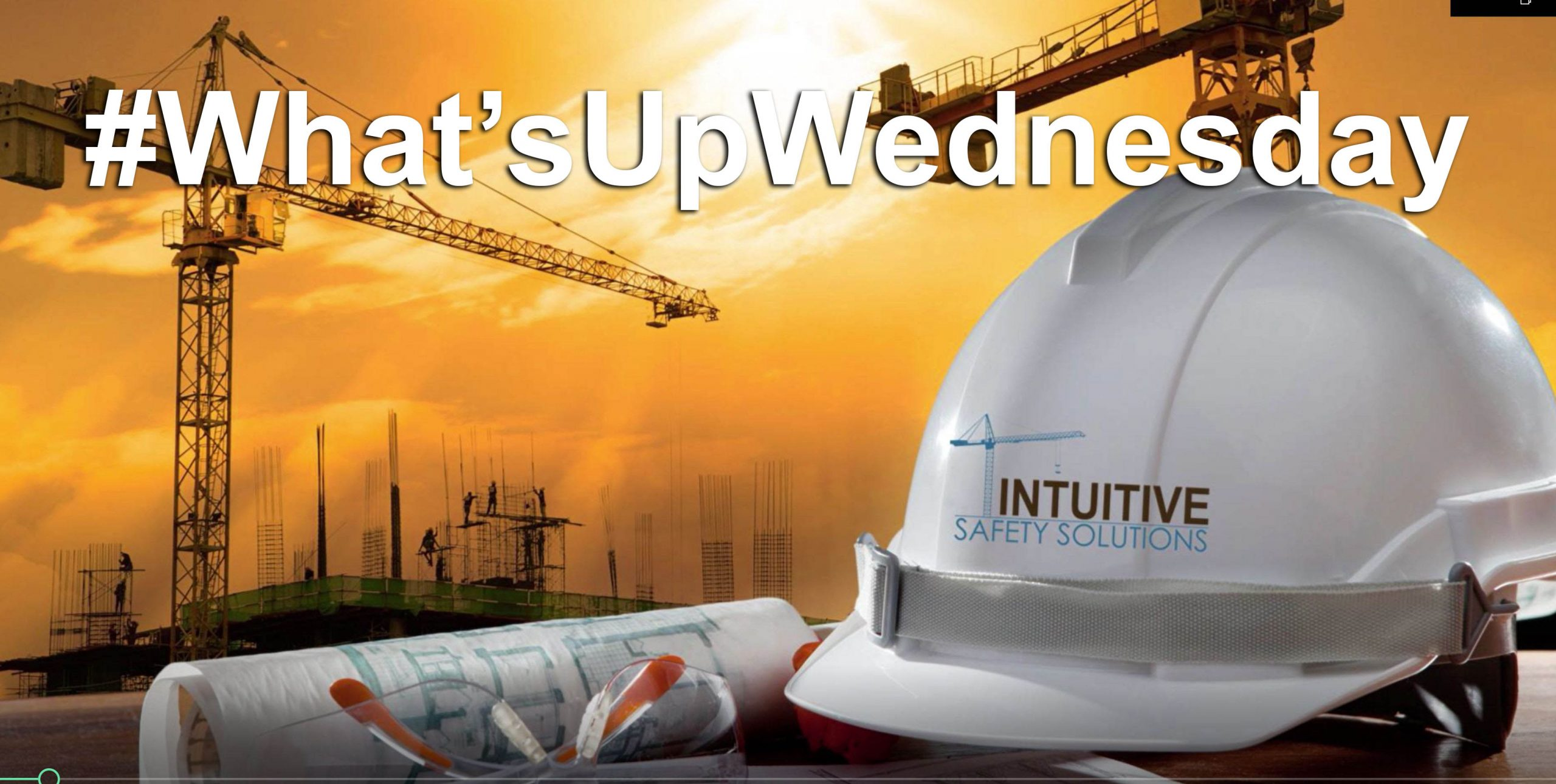 Read more about the article Introduction to Whatsupwednesday Video Series